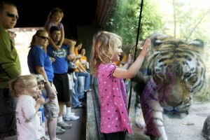 vilas-zoo-kids-and-tiger