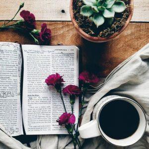 studimi i Biblës